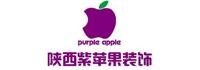 陜西紫蘋果裝飾